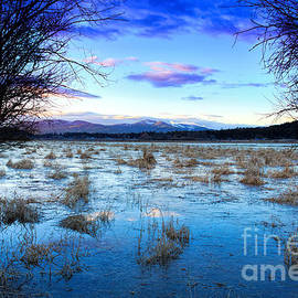 Reflective Moments  Photography and Digital Art Images - Hauser Lake Morning