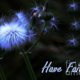Erica Hanel - Have Faith