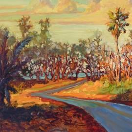 Dan Young - Hawaii shadow road