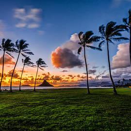 RB Art - Chainaman Hat Hawaii