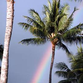 Karen Nicholson - Hawaiian Rainbow