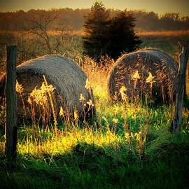 Michael L Kimble - Hay Roll Afternoon