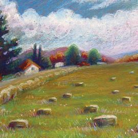 Renee Peterson - Haystacks in Field