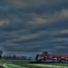 Lesa Fine - HDR Print Red Tattered Barn