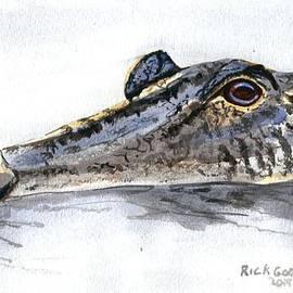 Richard Goohs - Head of an Alligator