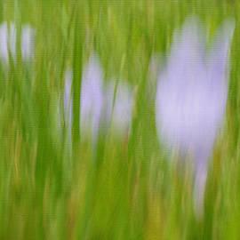 Irina Wardas - Healing Grass Painting
