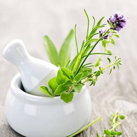 Elena Elisseeva - Healing herbs