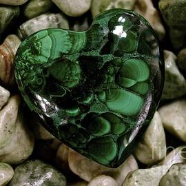 Lisa  Telquist - Heart of Green