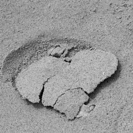Cynthia Guinn - Heart Of Sand
