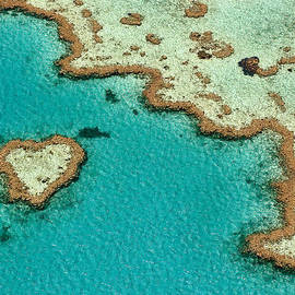 Mike Wing - Heart Reef