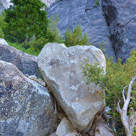 Debra Thompson - Heart Rock in Yosemite