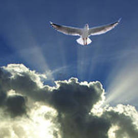 Geoff Childs - Heavenly Angel Rays - Cloudscape