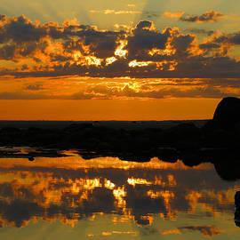 Dianne Cowen - Heavenly Rays