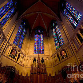 Amy Cicconi - Heinz Memorial Chapel Pittsburgh Pennsylvania