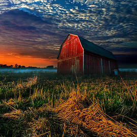 Phil Koch - Here Comes the Light