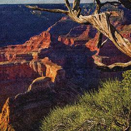 Bob and Nadine Johnston - Hermit Rest Grand Canyon National Park