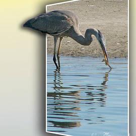 Mariarosa Rockefeller - Heron and Sea-horse
