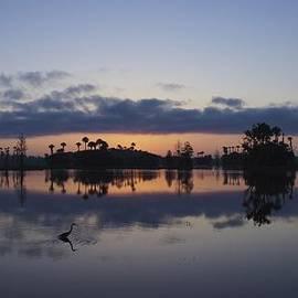 Brian Kamprath - Heron at Dawn