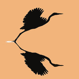 Paul Lyndon Phillips - Heron Taking Flight Silhouette -9382e