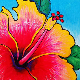 Adam Johnson - Hibiscus 01