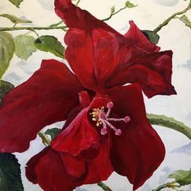 Alan Lakin - Double Hibiscus