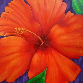 Kathleen Toval - Hibiscus