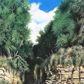 David Neace - Hidden Canyon