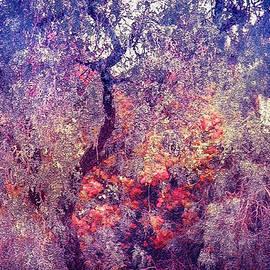 Jenny Rainbow - Hidden Garden of Desire