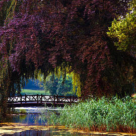 Jenny Rainbow - Hidden Shadow Bridge at the Pond. Park of the De Haar Castle