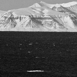 David Broome - High Arctic Fjordland Seascape