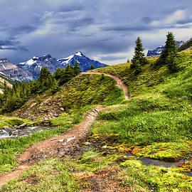 Kathleen Bishop - High Mountain Trail