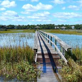 Kathy Baccari - High Tide At Pawleys Island
