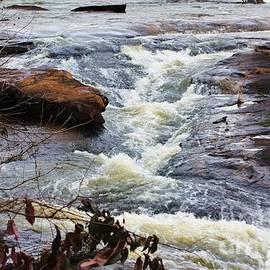 Chuck  Hicks - High Water Falls