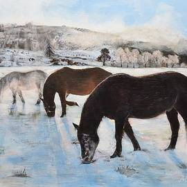 Mike Paget - Highland Ponies