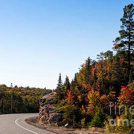 Les Palenik - Highway 17 north of Lake Superior