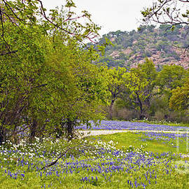 Gary Holmes - Hill Country Springtime