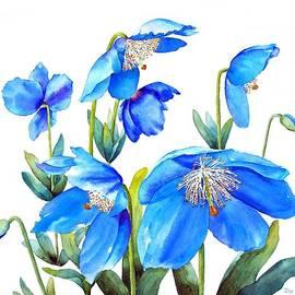 Pat Yager - Himalayan Blue Poppies
