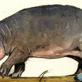 Juan  Bosco - Hippo walk