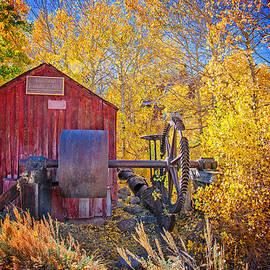 Lynn Bauer - Historic Knight Wheel #2
