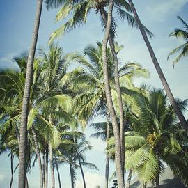 Sharon Mau - Hoaloha Beach Park Canoe Club Kahului Maui Hawaii