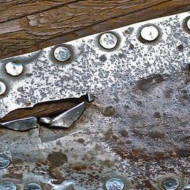 Bill Owen - Hole Patch 3 John Muir Woods