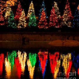 Nancy Mueller - Holiday Lights Reflection