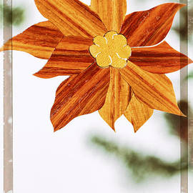 Jo Ann Tomaselli - Poinsettia Holiday Image Art