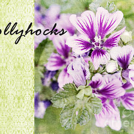 Pam  Holdsworth - Hollyhocks