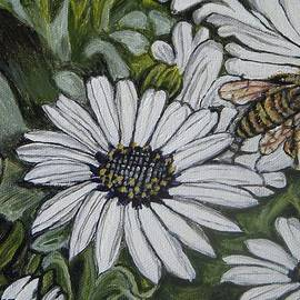 Kimberlee  Baxter - Honeybee Taking the Time to Stop and Enjoy the Daisies