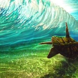 Nick Knezic - Honu surf 2