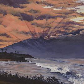 Darice Machel McGuire - Hookipa Sunset