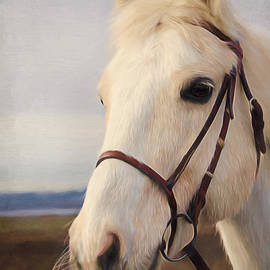 Jordan Blackstone - Horse Art - Beauty Is A Light