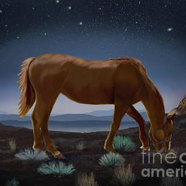 Sydne Archambault - Horse Beneath the Stars