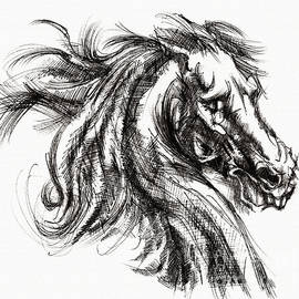 Daliana Pacuraru - Horse face ink sketch drawing - Inventing a Horse